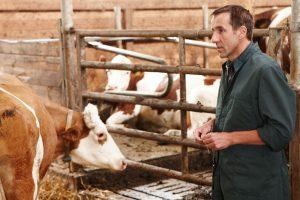 Tierarztpraxis Berger